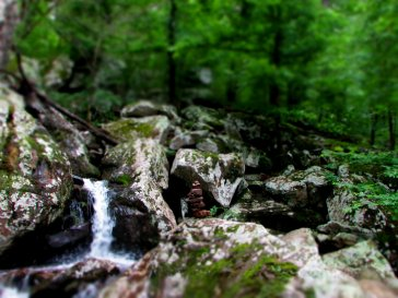The beautiful sound of water constant throughout the hike