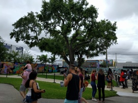 Wynwood (1)